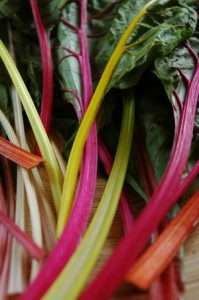 Swiss chard highest source of biotin