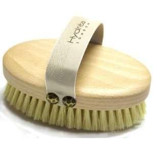Cactus Bristle Brush