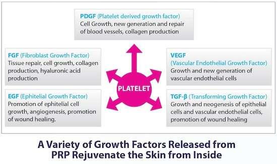 Platelet Rich Plasma Prp Treatment For Hair Growth
