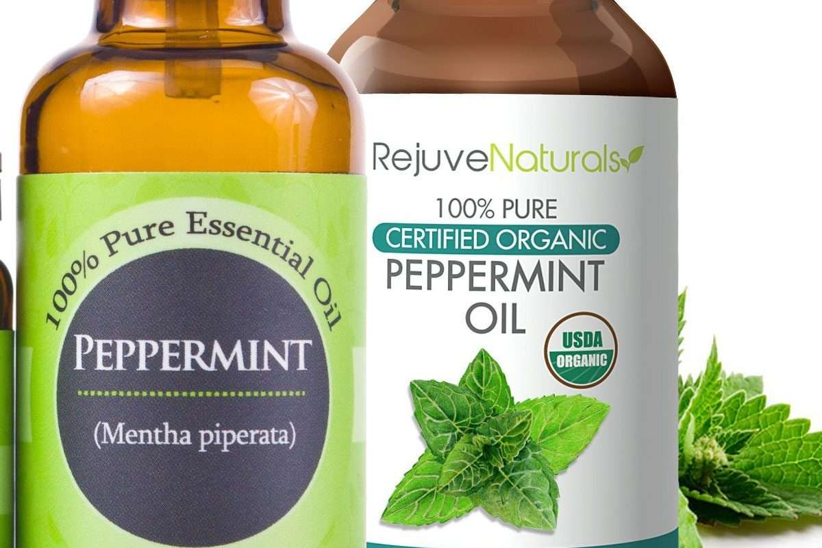 Peppermint oil and hair loss