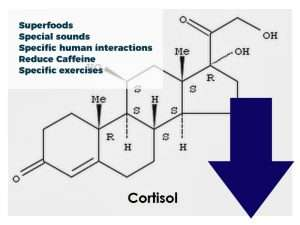 How to reduce cortisol